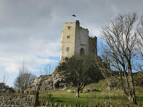 February: Roch Castle